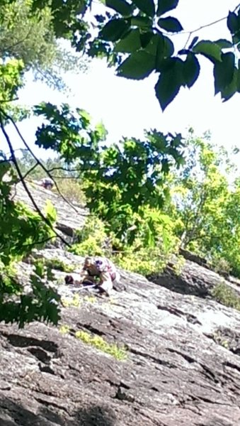 Rock Climbing Photo: ccaissie leading Poison Ivy...6/29/14