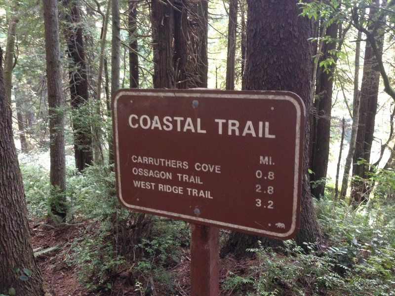 Look for this sign to find the trailhead