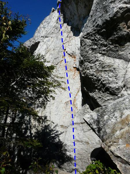Rock Climbing Photo: Bonsaï 5.8