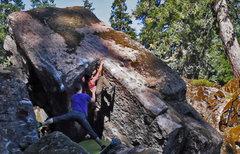 "Rock Climbing Photo: New boulder problem in the ""Rewilding"" f..."