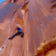 Rock Climbing Photo: Indian Creek - TR
