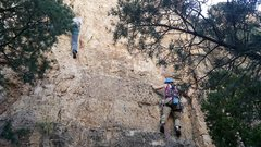 Rock Climbing Photo: Climbers on Stress Rehearsal (5.10d) and Stinger (...