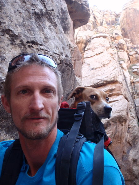 Rock Climbing Photo: Doggy Rappelling