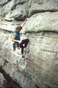 Rock Climbing Photo: The Sting 5.11d / Trapps / Gunks / Climber: N. Fal...