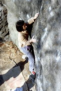 Rock Climbing Photo: The Dawg V6 / Cat Rock / Central Park / Climber: Y...