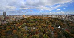 Rock Climbing Photo: Central Park