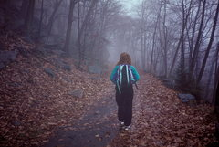 Rock Climbing Photo: Rainy day on the carriage road.  Heading down to t...