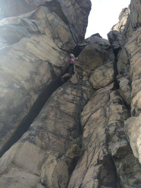 Rock Climbing Photo: Chelsea squeezing up Scream Amy.
