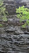 Rock Climbing Photo: The Sauce- 12b.
