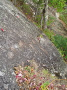 Rock Climbing Photo: Looking down the first 20-25 ft of the P1 of the 1...