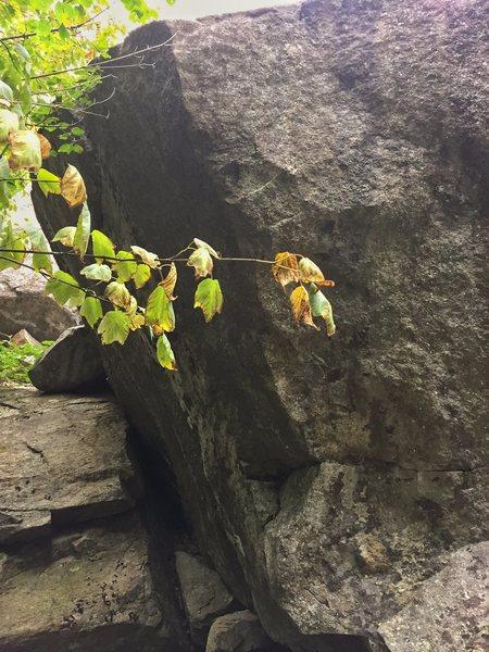 Rock Climbing Photo: Sundown Boulder
