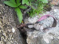 Rock Climbing Photo: A Chouinard original