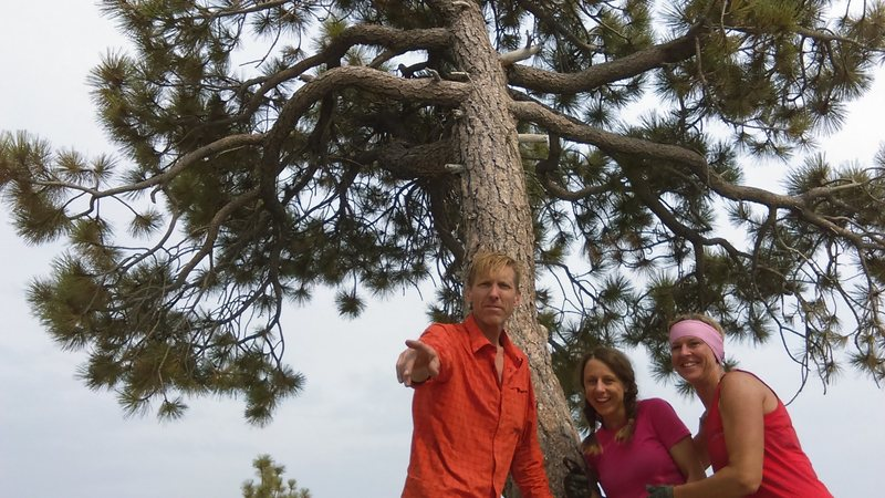 Rock Climbing Photo: at the top out tree. it took us two nights on the ...