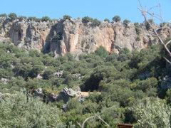 Rock Climbing Photo: Limestone walls near Climbers Garden