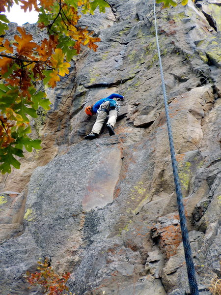 Rock Climbing Photo: Checking for Wasps on TR