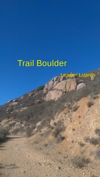 Trail Boulder and Leapin' Lizards