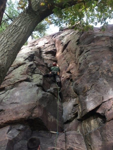 Nicholas Dehaan on the lead of Coatimundi Crack.