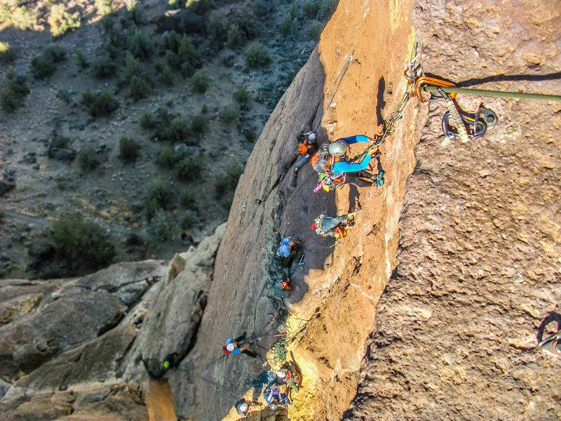 Rock Climbing Photo: Stephanie Balbin on the bolt ladder. This photo al...