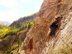 Rock Climbing Photo: SVS on H.B.