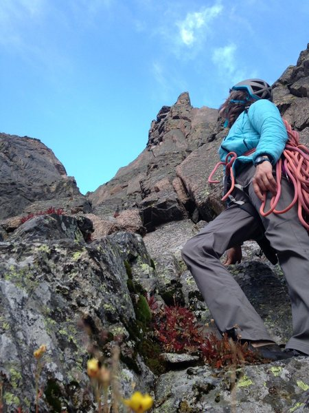 looking up at flying buttress