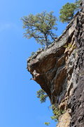 Rock Climbing Photo: Whipping on Maximus 5.12a