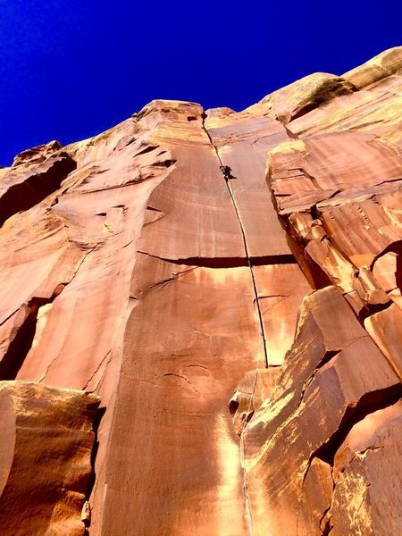 Rock Climbing Photo: Splitter!