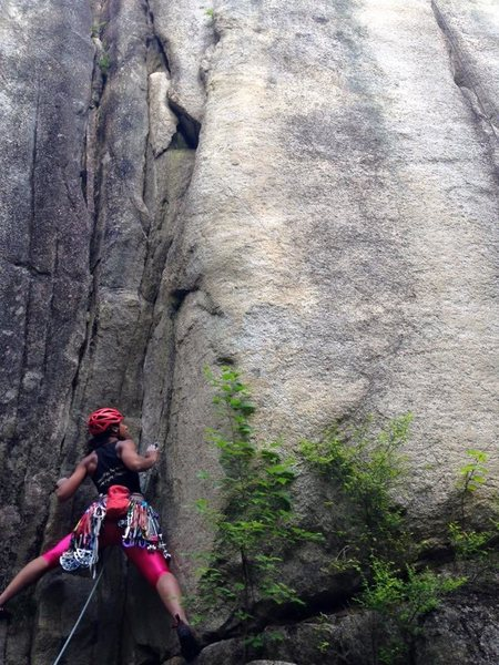 Rock Climbing Photo: Squamish!  Orifice Fish.