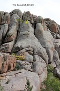 Rock Climbing Photo: The Beaver (5.6). Descend from Topside the Daisies...
