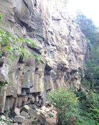 Rock Climbing Photo: Jungle Cliff