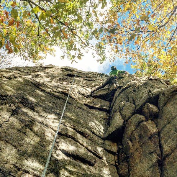 Rock Climbing Photo: Kling-On