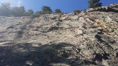 Rock Climbing Photo: Looking up Tick Rock