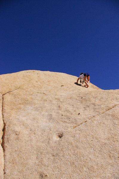 Rock Climbing Photo: Luna finishing pitch three.