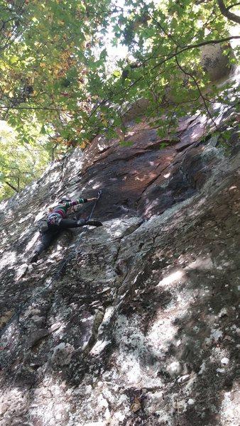 Rock Climbing Photo: Millie crimping through Rage