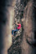 Rock Climbing Photo: Jonny on El Diablo. As seen through the small tree...
