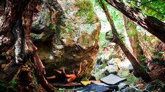 Rock Climbing Photo: Bonum Vitae