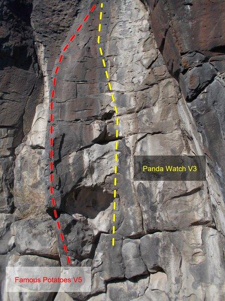 Rock Climbing Photo: Panda Watch!