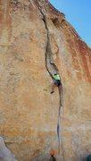 Rock Climbing Photo: Curving splitter.  Pleasing to the eyes.  Pleasing...