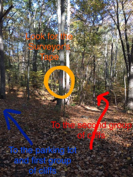 The surveyors' tape is easy to miss!