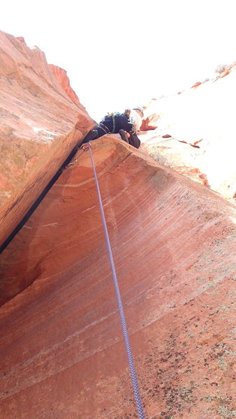 Rock Climbing Photo: The perfect hand crack after the Falling Petal roo...