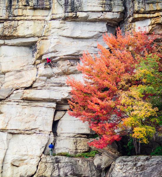 Rock Climbing Photo: Greg Larsen midway through a solid redpoint effort...