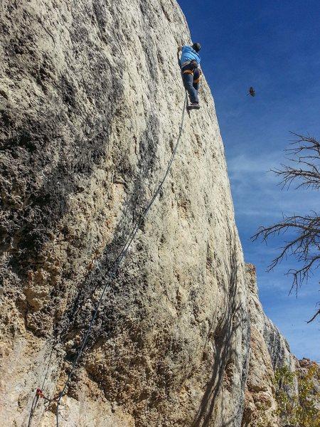 Rock Climbing Photo: ESLJr. on the FA