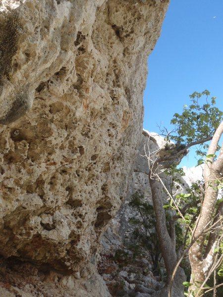 Next big wall at Pelican cove