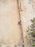 Rock Climbing Photo: Stemming through the lower section on Lion's Chair
