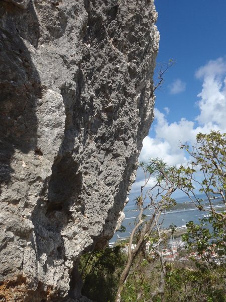 Iguana drive. 25 ft Overhanging coral stone very sharp, watch your finger, is part of the same wall at Pelican Cove with Boulder or solo climb possibilities, but climb carefully the fall is right on the below cliff pads are necessary..