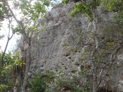 Rock Climbing Photo: Way gray. Easy Boulder, 20 ft, better with a pad, ...