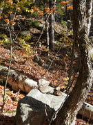 Rock Climbing Photo: 2 cairns on a rock marks the turn off RIGHT, out o...