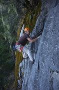 Rock Climbing Photo: organics