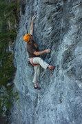 Rock Climbing Photo: ceders dick