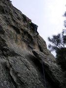 Rock Climbing Photo: Chris Harmston gettin' good protection on Odorifer...