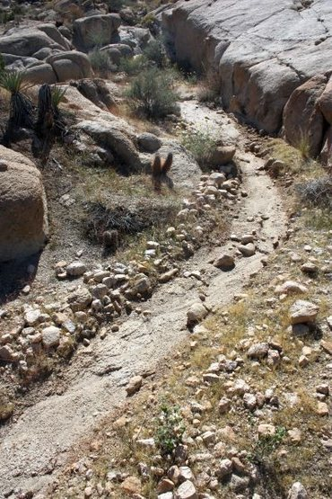 Rock Climbing Photo: A wash on the way to the crag, Joshua Tree NP
